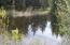 natural pond in back yard