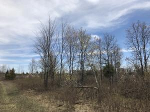78 Acres Parkway Rd, Stephenson, WI 54114