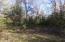 Lot 17 Oxbow Ln, Wausaukee, WI 54177
