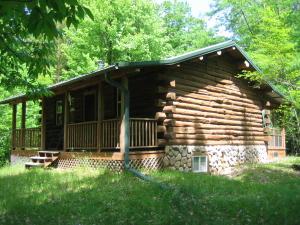 SE Corner of Cabin