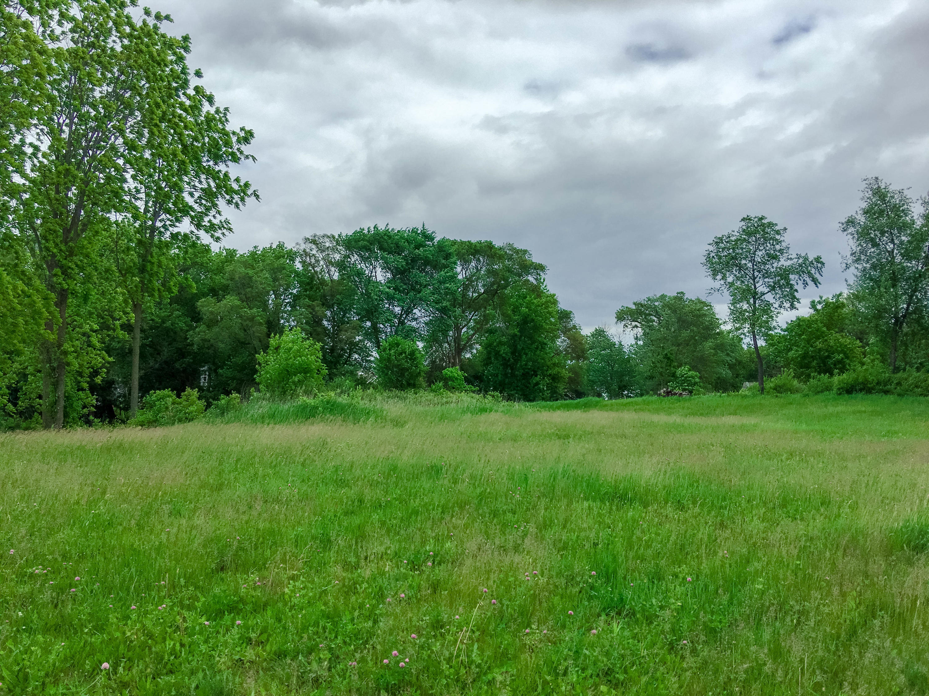 1990 Carriage Hills Dr, Delafield, Wisconsin 53018, ,Vacant Land,For Sale,Carriage Hills Dr,1644708