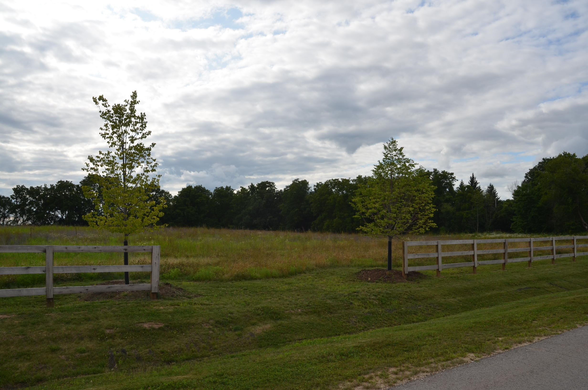W339S177 Foxtail Ct, Delafield, Wisconsin 53018, ,Vacant Land,For Sale,Foxtail Ct,1647057