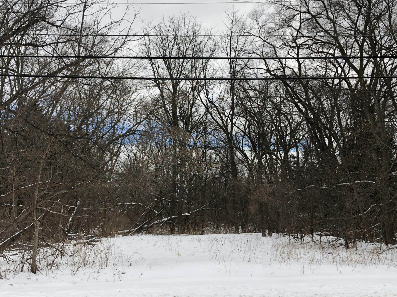 3940 Lilly Rd, Brookfield, Wisconsin 53005, ,Vacant Land,For Sale,Lilly Rd,1654459