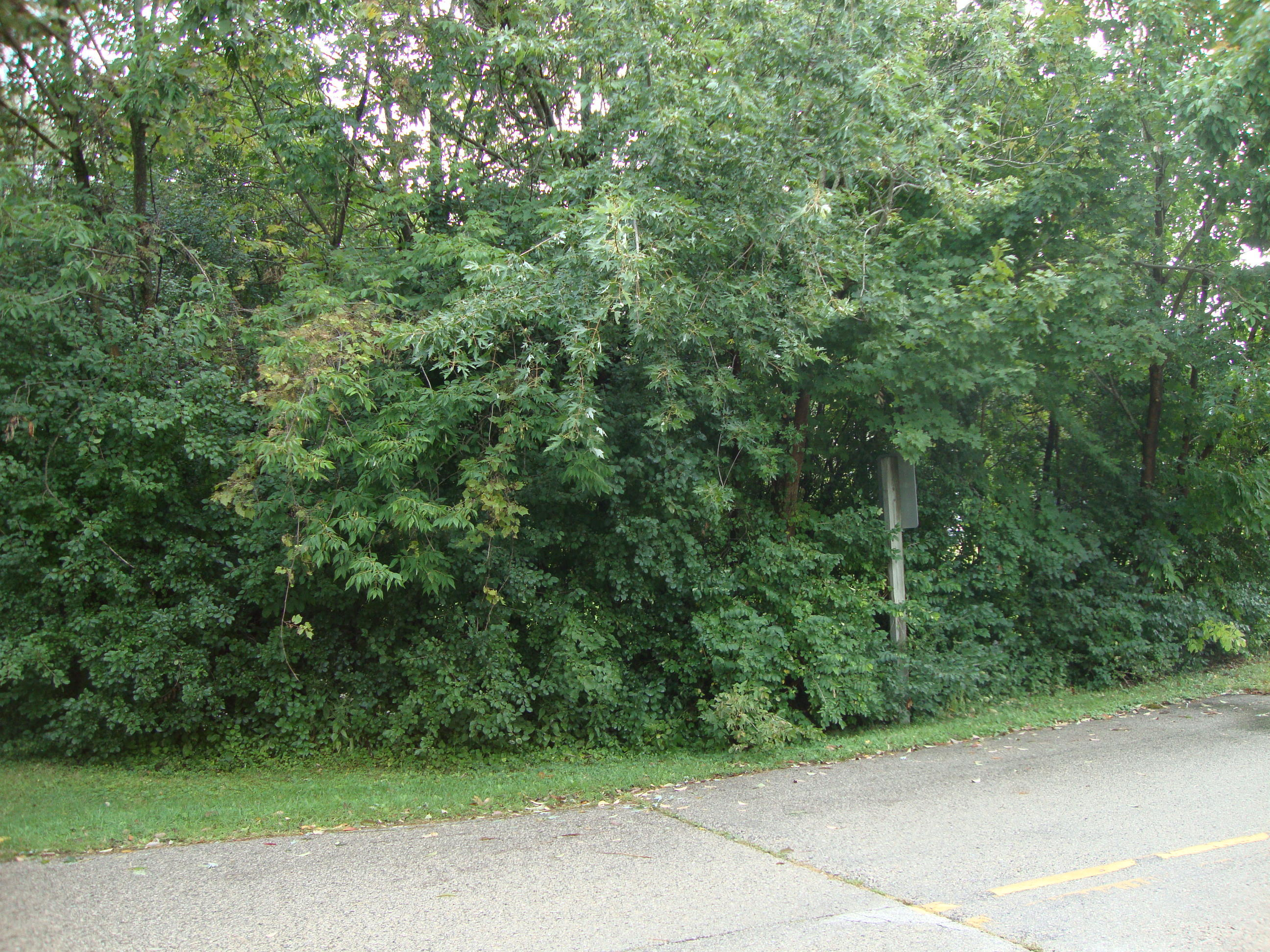 17550 Greenfield Ave, Brookfield, Wisconsin 53045, ,Vacant Land,For Sale,Greenfield Ave,1658332