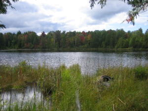 N6869 Loop Lake Rd, Stephenson, WI 54114