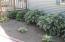 nice flower beds