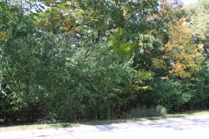 Lt18 Timberline Cir, Delafield, Wisconsin 53018, ,Vacant Land,For Sale,Timberline Cir,1662704