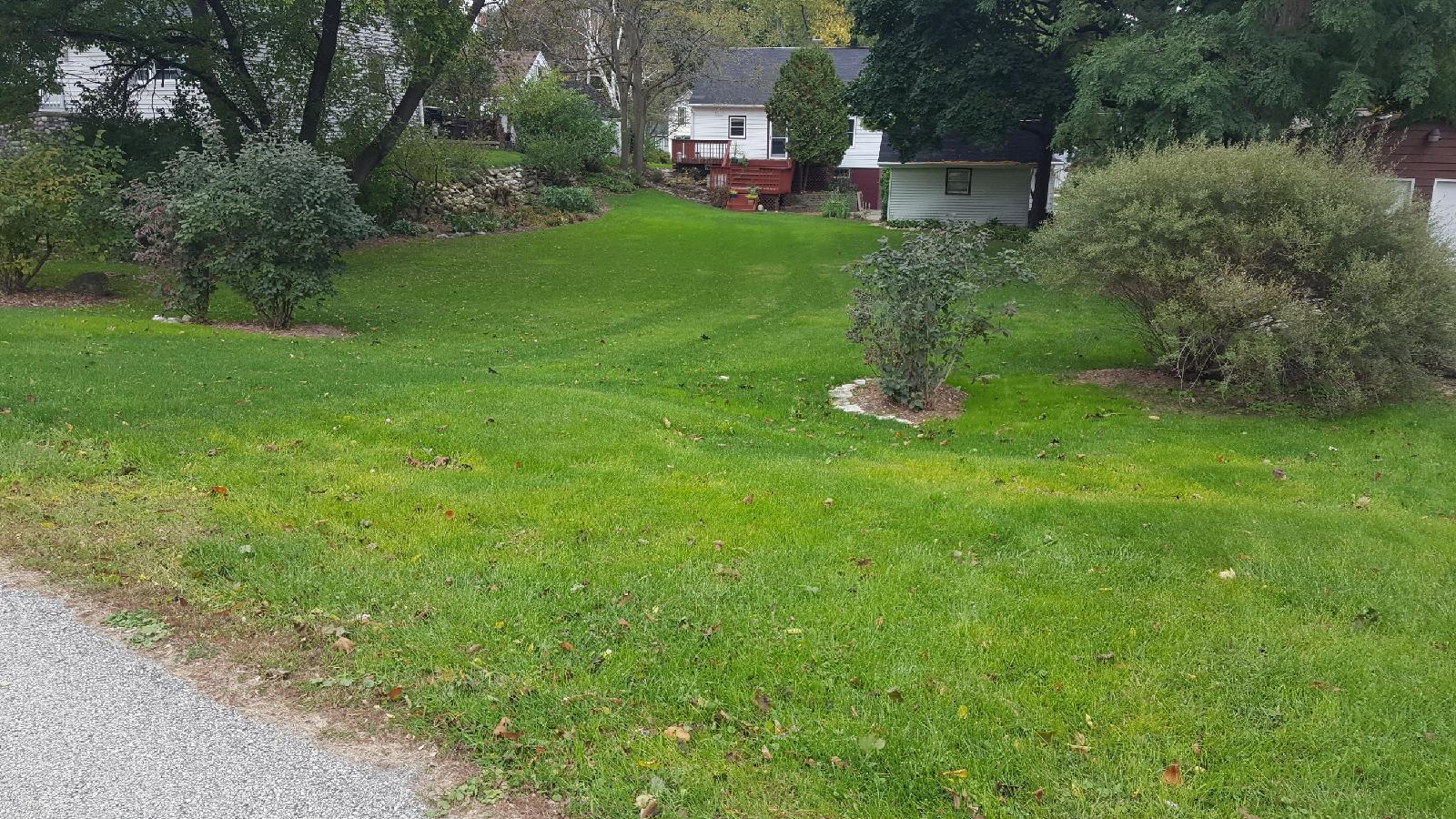 1014 Capitol Dr, Hartland, Wisconsin 53029, ,Vacant Land,For Sale,Capitol Dr,1651792
