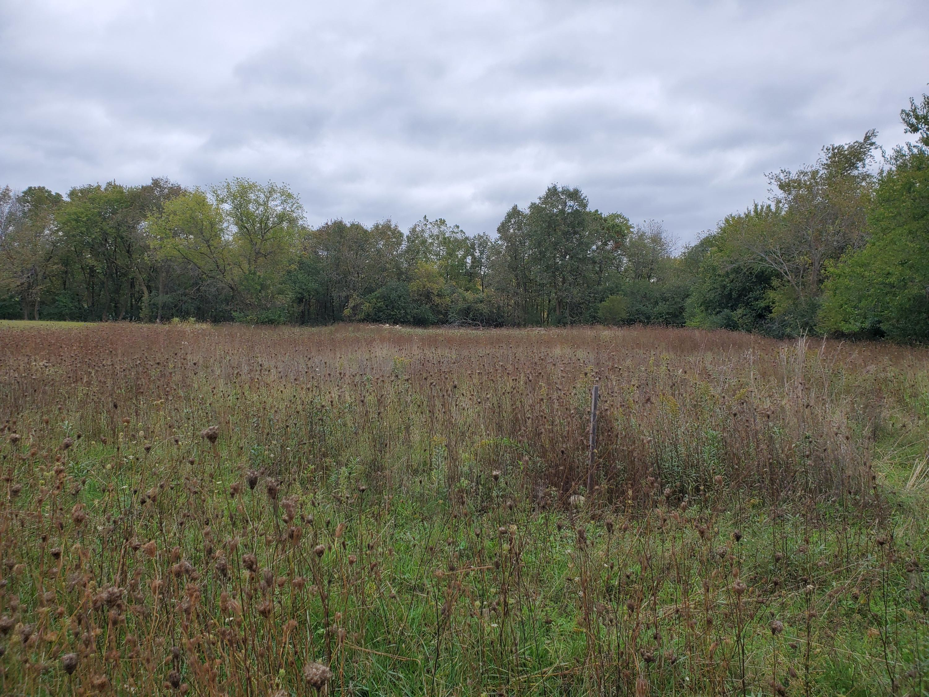 1282 Capitol Dr, Hartland, Wisconsin 53029, ,Vacant Land,For Sale,Capitol Dr,1667233