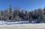 14.76 AC CTY HWY W, Lake, WI 54159