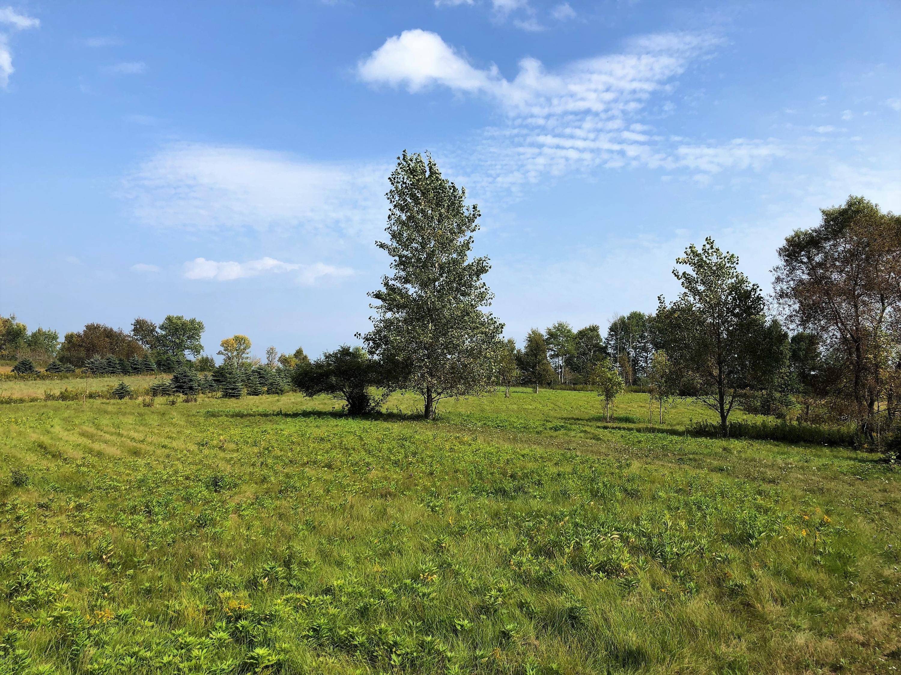 10279 Lakeshore Rd, Centerville, Wisconsin 53063, ,Vacant Land,For Sale,Lakeshore Rd,1690377