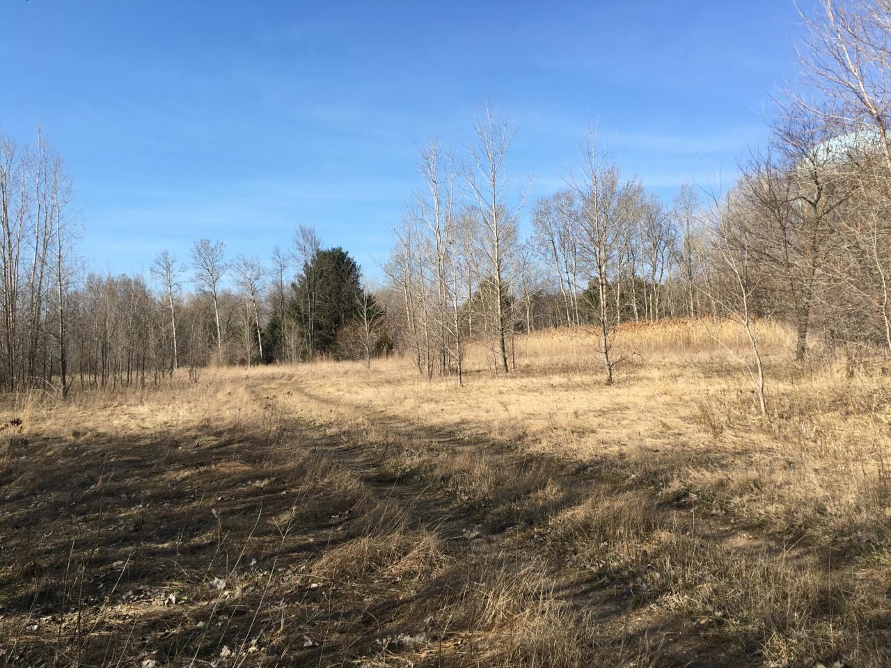 TBD Edwin ST, Marinette, Wisconsin 54143, ,Vacant Land,For Sale,Edwin ST,1690383