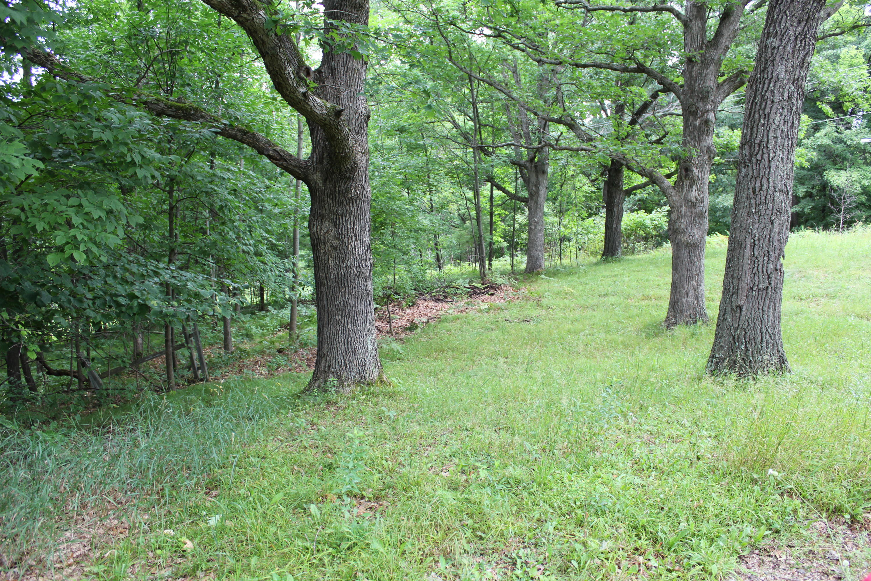 W9475 Olson Lane, Stephenson, Wisconsin 54114, ,Vacant Land,For Sale,Olson Lane,1702551