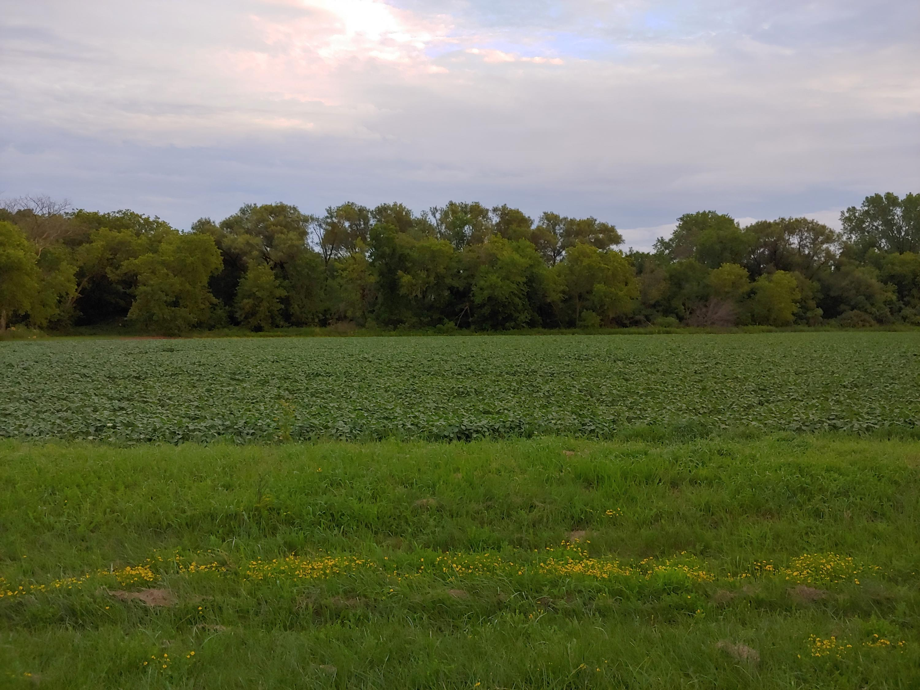 Lt3 County Highway NN, Jackson, Wisconsin 53095, ,Vacant Land,For Sale,County Highway NN,1702469