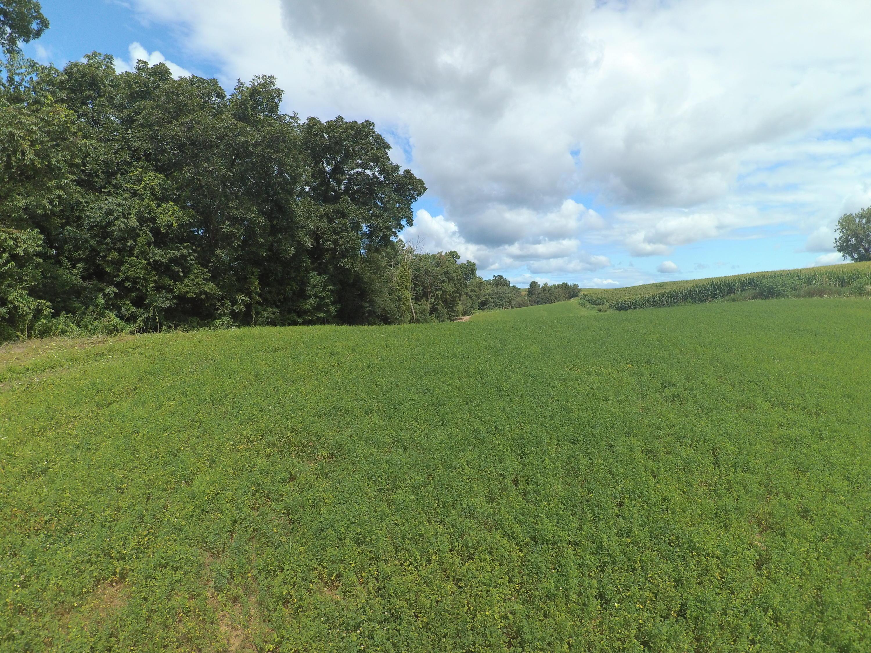 Lot 2 Sorenson Ln, Harmony, Wisconsin 54665, ,Vacant Land,For Sale,Sorenson Ln,1702514
