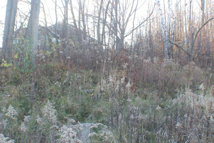 Lt 20 Stonebridge Dr, Howards Grove, Wisconsin 53083, ,Vacant Land,For Sale,Stonebridge Dr,1702693
