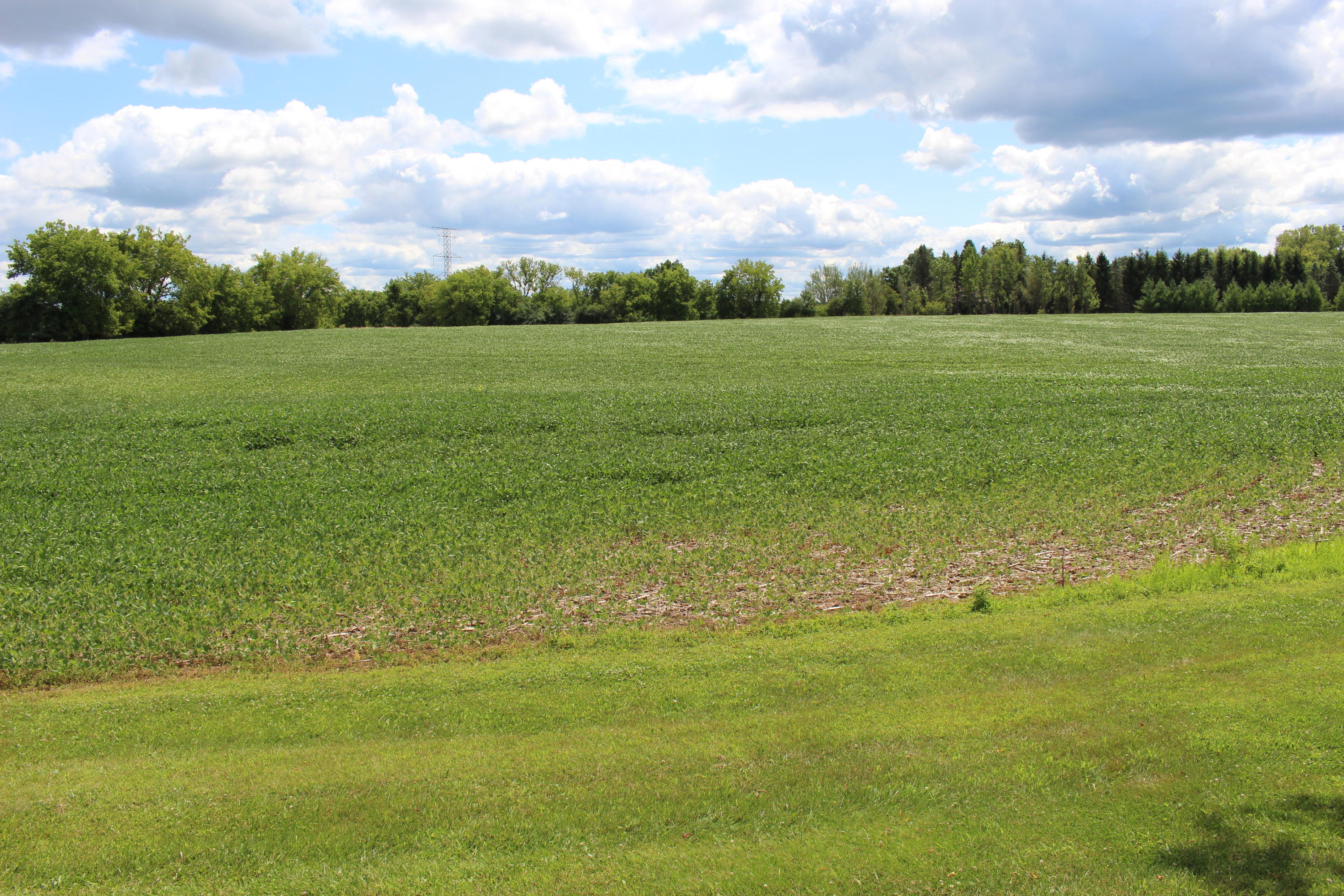 Lt2 Lake Five Rd, Lisbon, Wisconsin 53029, ,Vacant Land,For Sale,Lake Five Rd,1702850