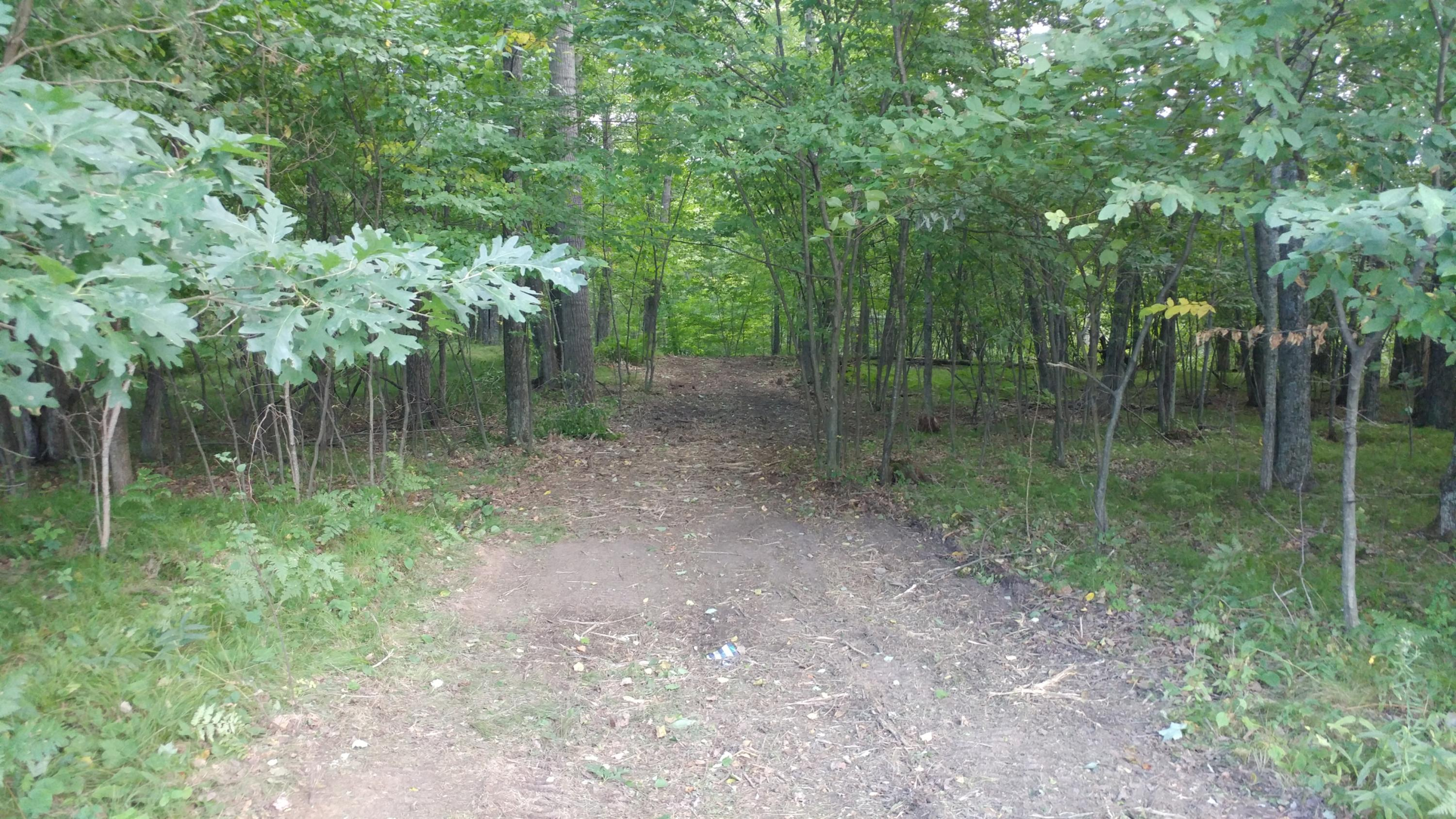 Lot 18 Rosa St., Crivitz, Wisconsin 54114, ,Vacant Land,For Sale,Rosa St.,1702653