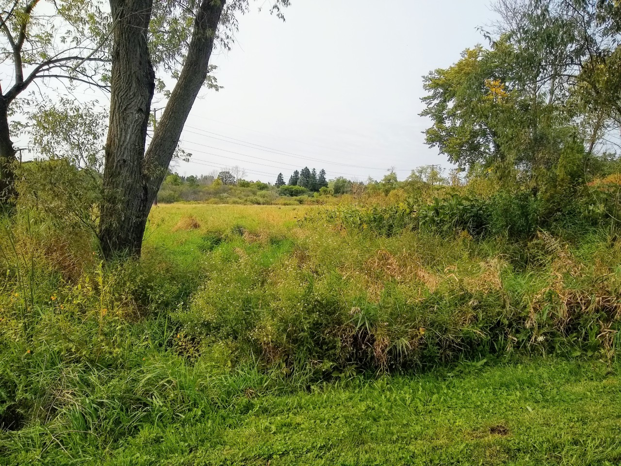 Lt8 Green Valley Rd, Grafton, Wisconsin 53024, ,Vacant Land,For Sale,Green Valley Rd,1709915