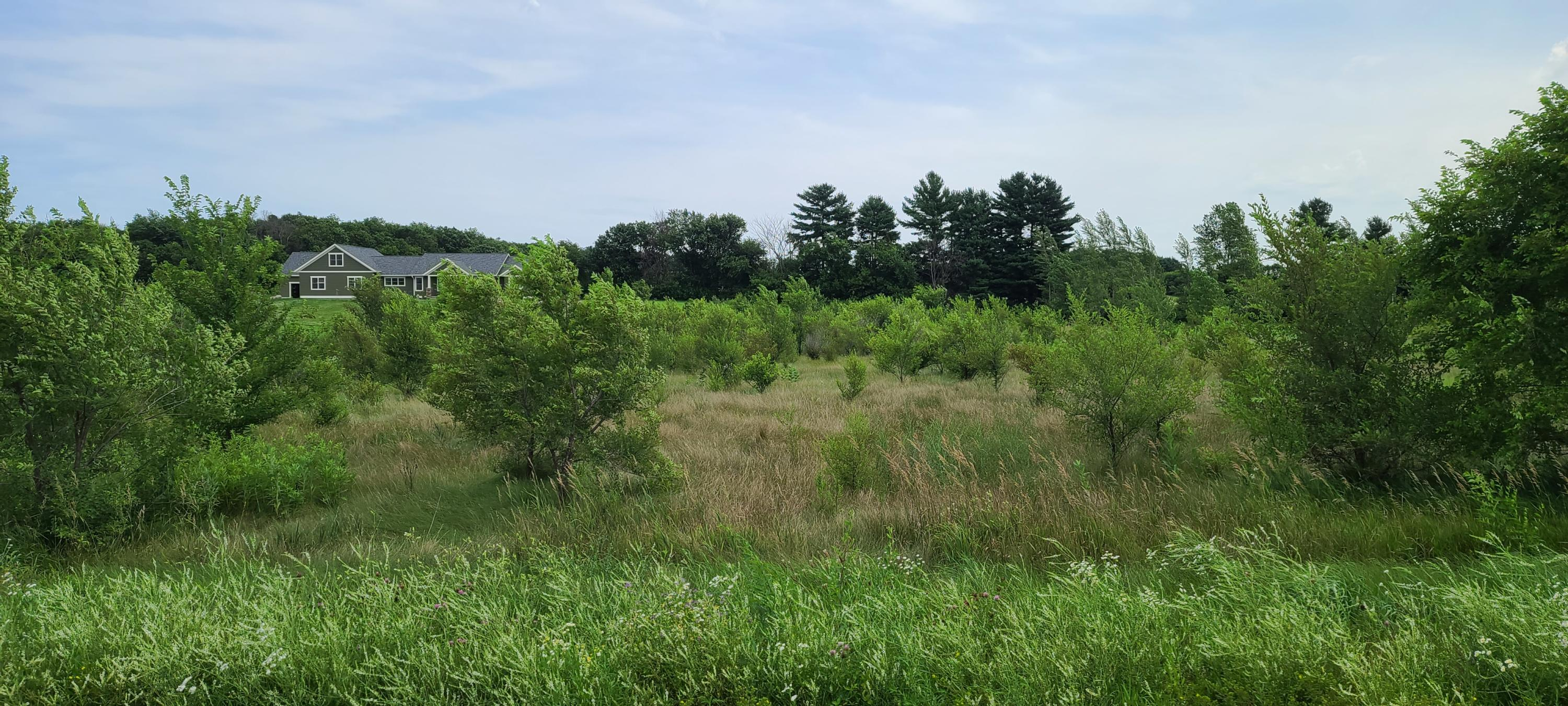 Lot 67 Wildrose Rd, Trempealeau, Wisconsin 54661, ,Vacant Land,For Sale,Wildrose Rd,1710232