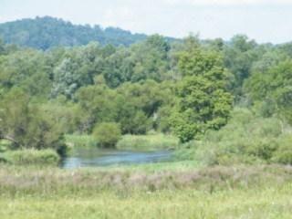W2060 JONES RD, Bangor, Wisconsin 54614, ,Vacant Land,For Sale,JONES RD,1710179