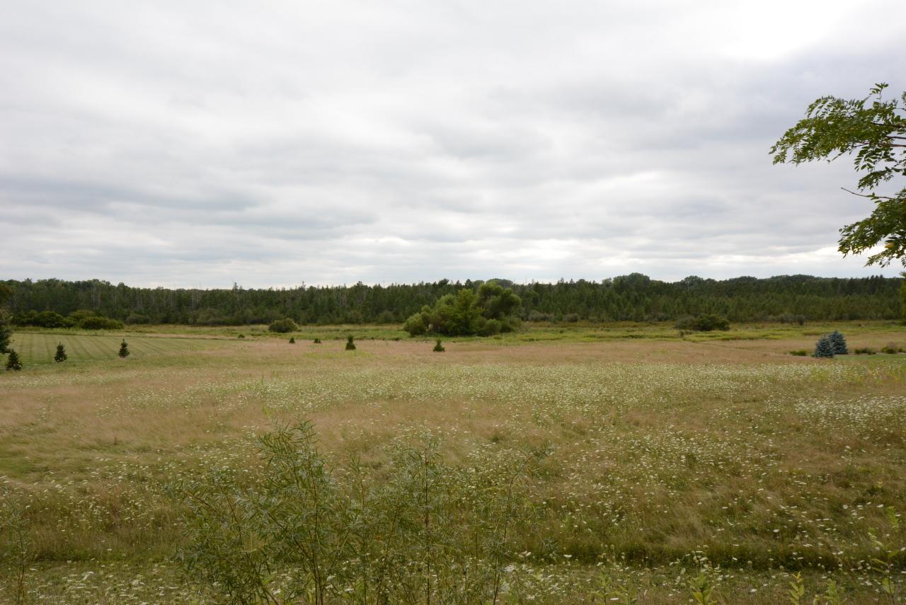 Lt6 McMahon Rd, Oconomowoc, Wisconsin 53066, ,Vacant Land,For Sale,McMahon Rd,1710547