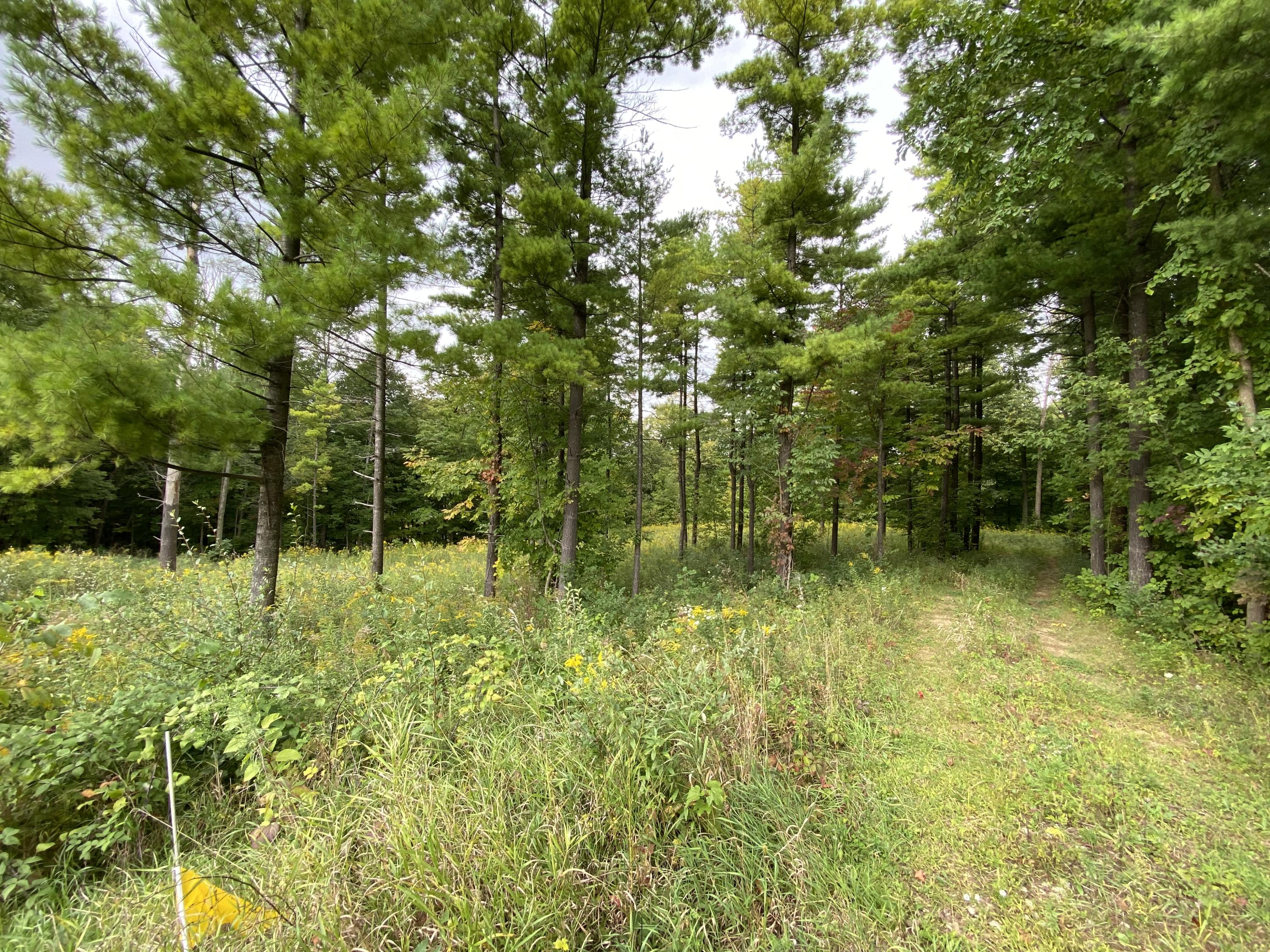 1128 Evergreen Dr, Trenton, Wisconsin 53095, ,Vacant Land,For Sale,Evergreen Dr,1710642