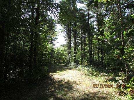 W5688 Three Rivers Landing, Wausaukee, Wisconsin 54177, ,Vacant Land,For Sale,Three Rivers Landing,1710720