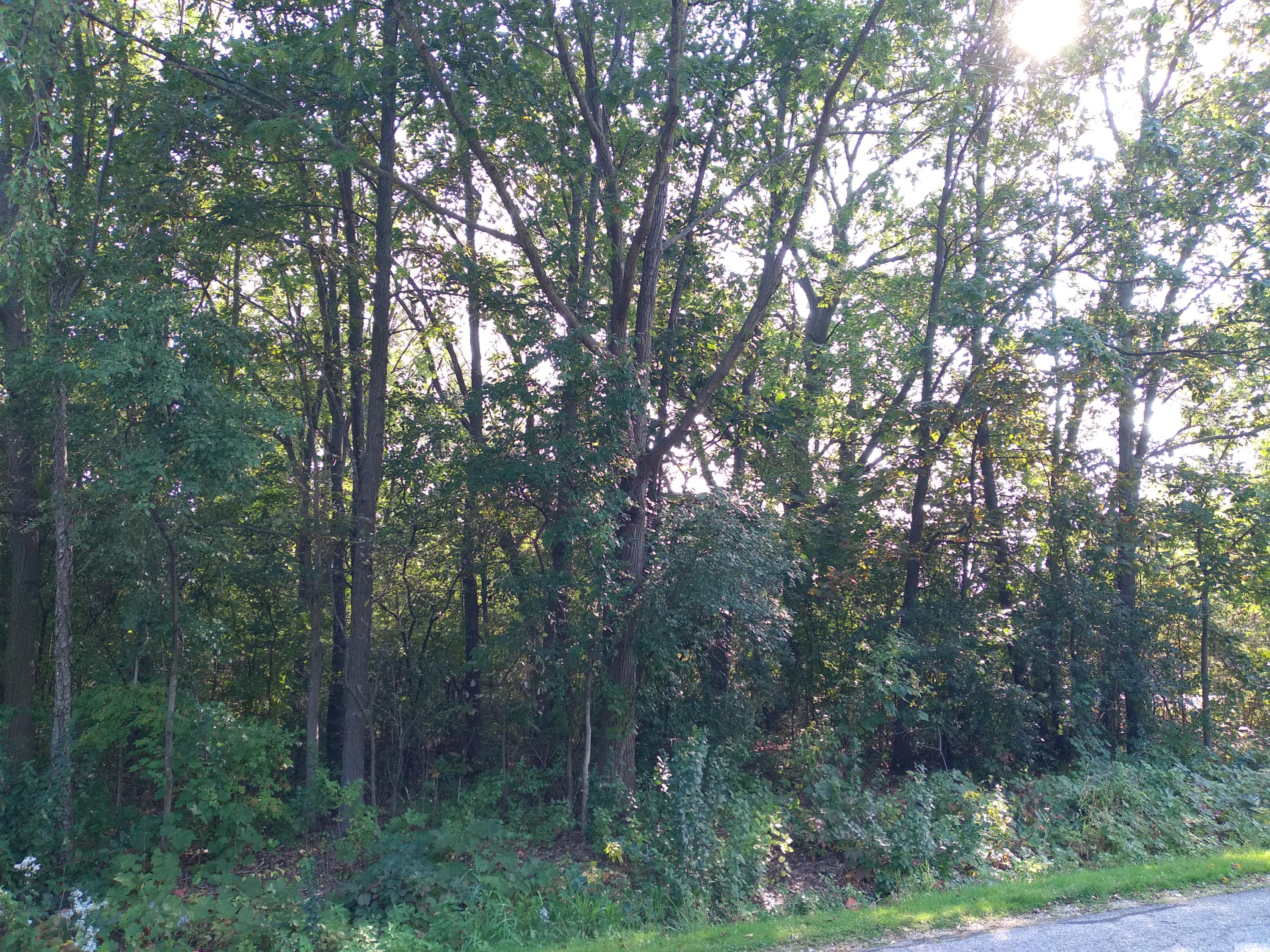 0000 120th St., Pleasant Prairie, Wisconsin 53158, ,Vacant Land,For Sale,120th St.,1710747
