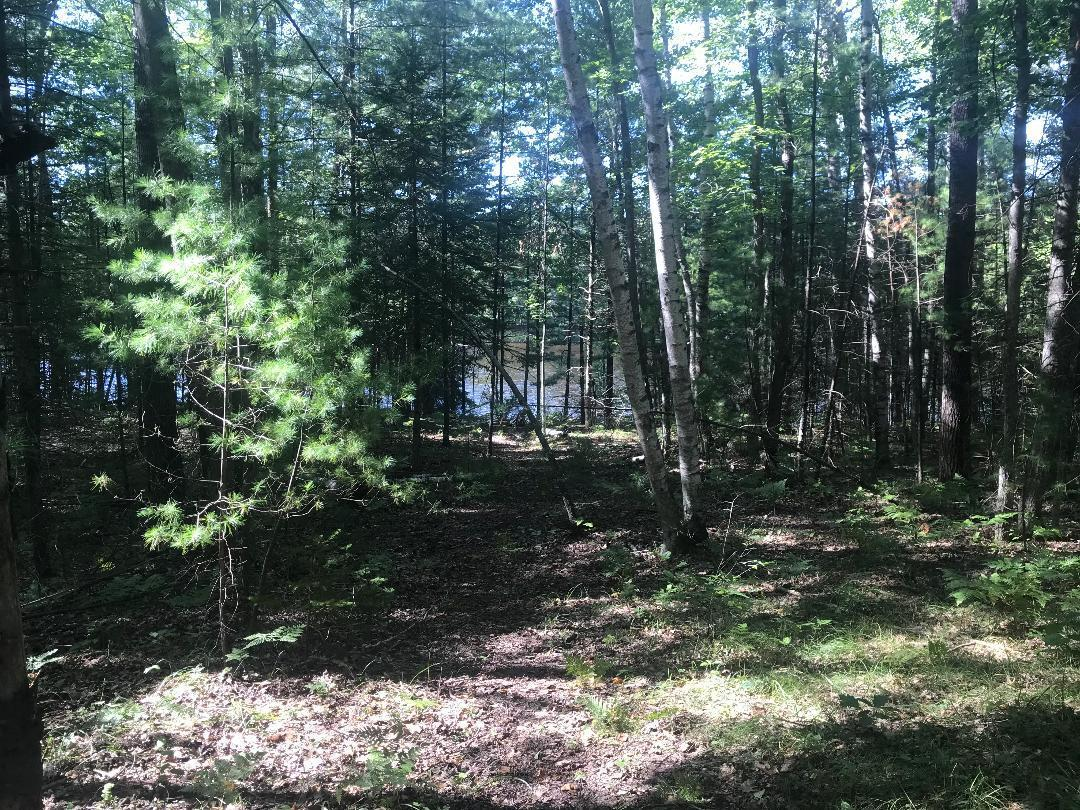 Lot 8 Menominee Shores Dr, Wagner, Wisconsin 54177, ,Vacant Land,For Sale,Menominee Shores Dr,1711375