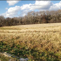 S6W33702 Four Seasons Rd, Delafield, Wisconsin 53018, ,Vacant Land,For Sale,Four Seasons Rd,1718481