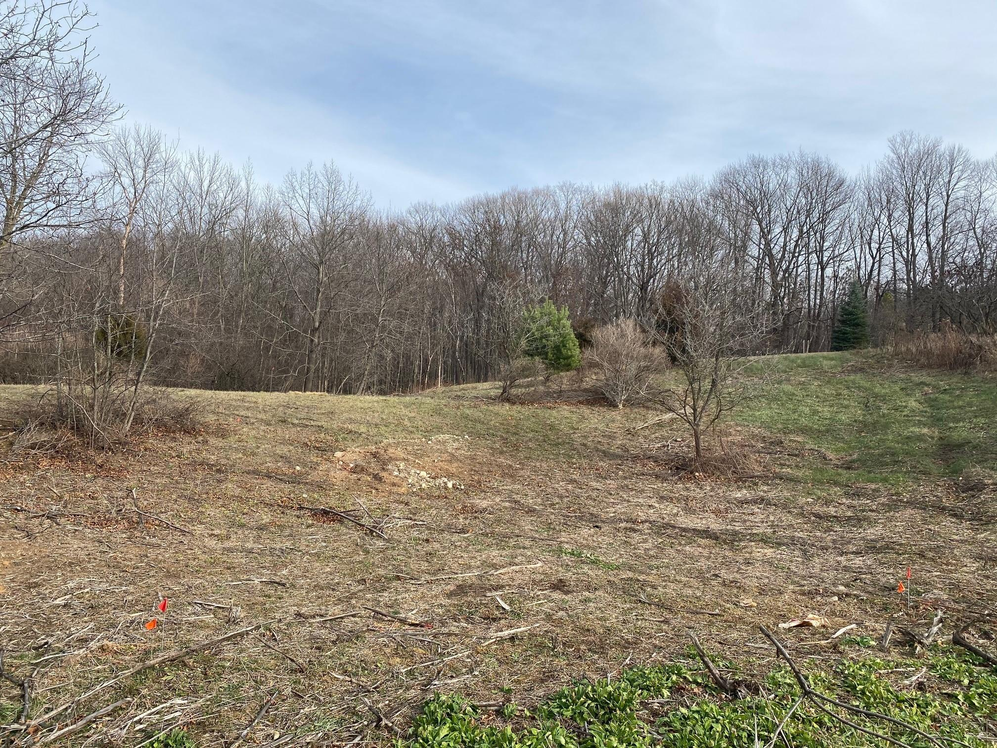1.036 Acre Lake View DR, Rhine, Wisconsin 53020, ,Vacant Land,For Sale,Lake View DR,1719681