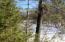 Lt 25 Island Bluff Ln, Wausaukee, WI 54177