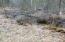 N11864 Betts Ln, Silver Cliff, WI 54104