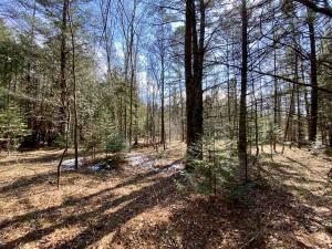1.68 Ac Peterson Rd, Wagner, WI 54177