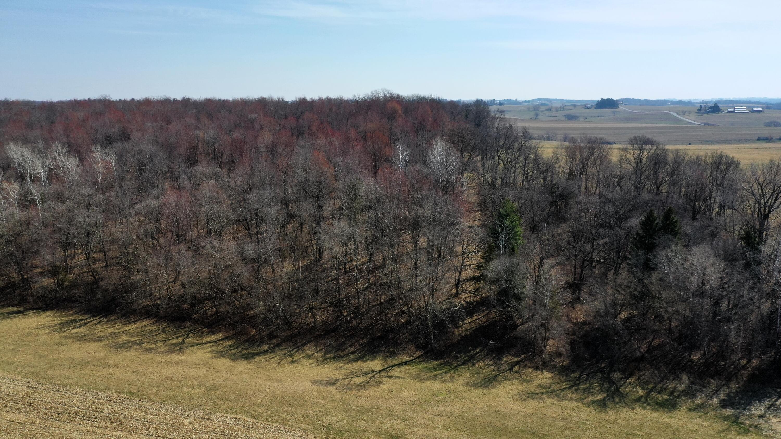 66+/- acres with several potential building sites.Wonderful recreational property with groomed trails and several hunting stands. Land is a mix of tillable, pasture, and woods (enrolled in MFL)Wonderful location within 30 minutes of La Crosse. Here's your opportunity to invest in rural living! Room for gardening, animals, hunting, ATVs and enjoying the outdoors. Just a short drive to several great trout fishing streams! Additional acres available! MLS # 1733484(10 acres with cabin and pole shed) and MLS#1733485 (126 .84 acres-whole farm)