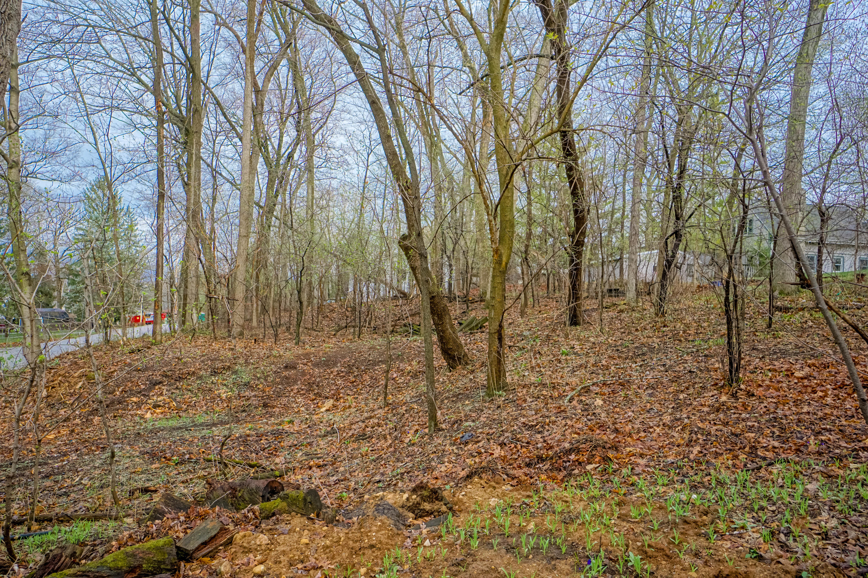 N22W28871 Louis Ave, Delafield, Wisconsin 53072, ,Vacant Land,For Sale,Louis Ave,1734029