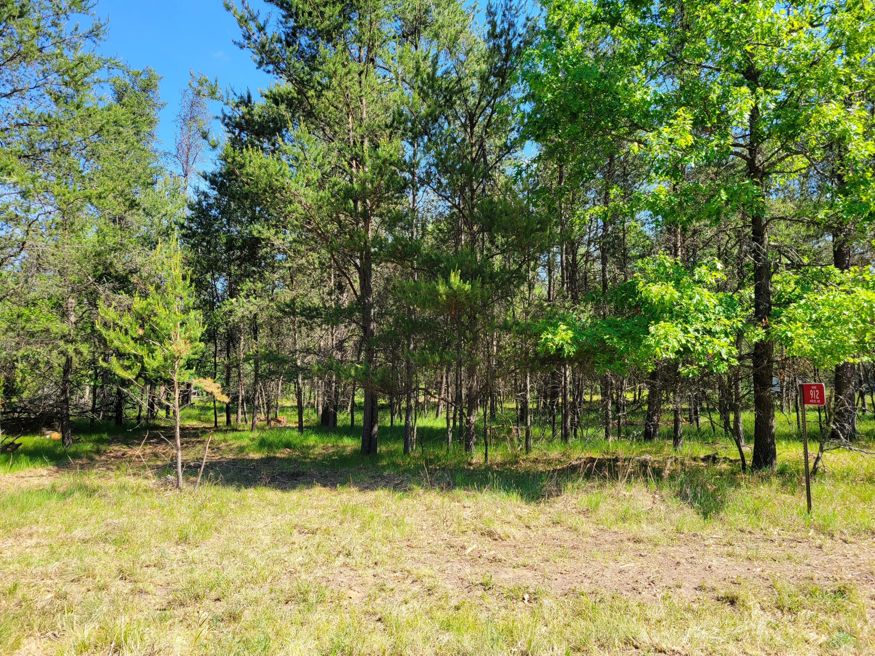 912 Apache Ave, Rome, Wisconsin 54457, ,Vacant Land,For Sale,Apache Ave,1746264