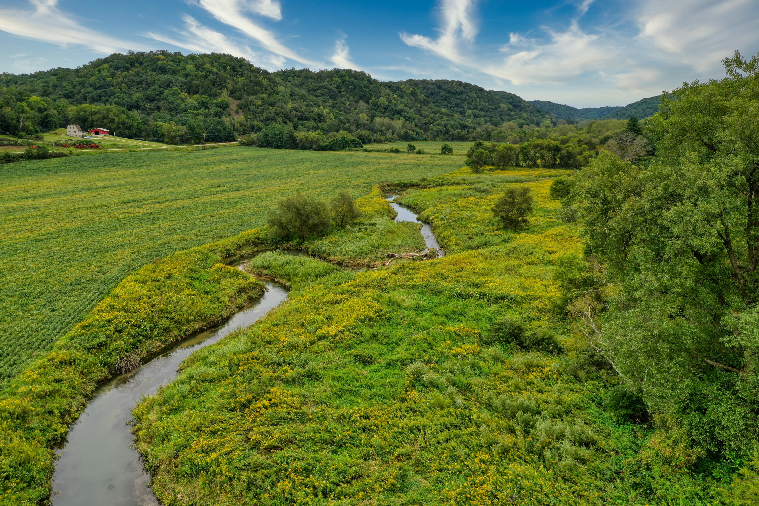Gorgeous setting for the  65.02+/- acres with approximately 22 acres tillable with the rest being mostly wooded.  Sugar Creek goes thru property!