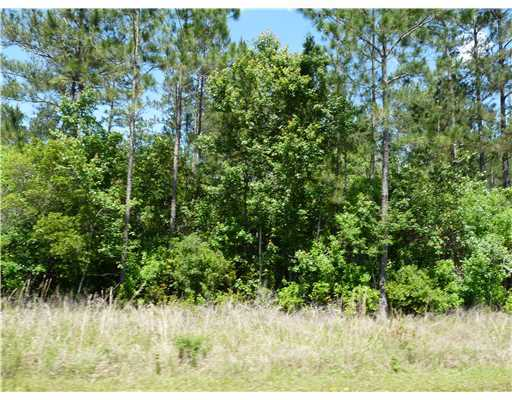 0 Wolf River Road And Big Creek Rd Gulfport MS 39503
