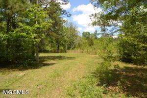 26089 Creek Cv, Perkinston, MS 39573