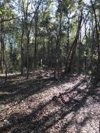 Gorgeous high and dry Lot to build your dream home. Secluded, yet really close to everything!