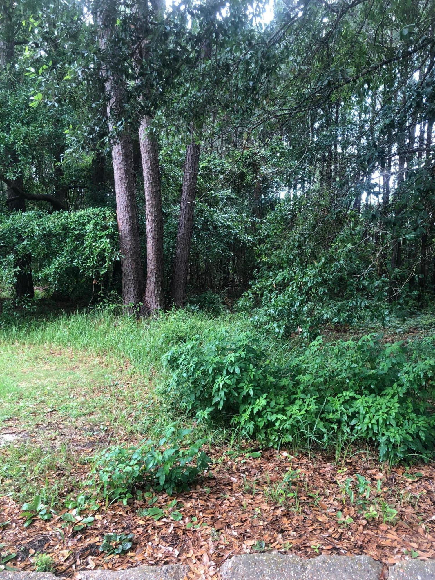 Lot 20 Creek Dr Gulfport MS 39503