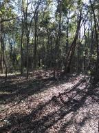 Build your dream home on this High and dry  lot with beautiful trees - adjacent to the National Park. Secluded, but close to everything!