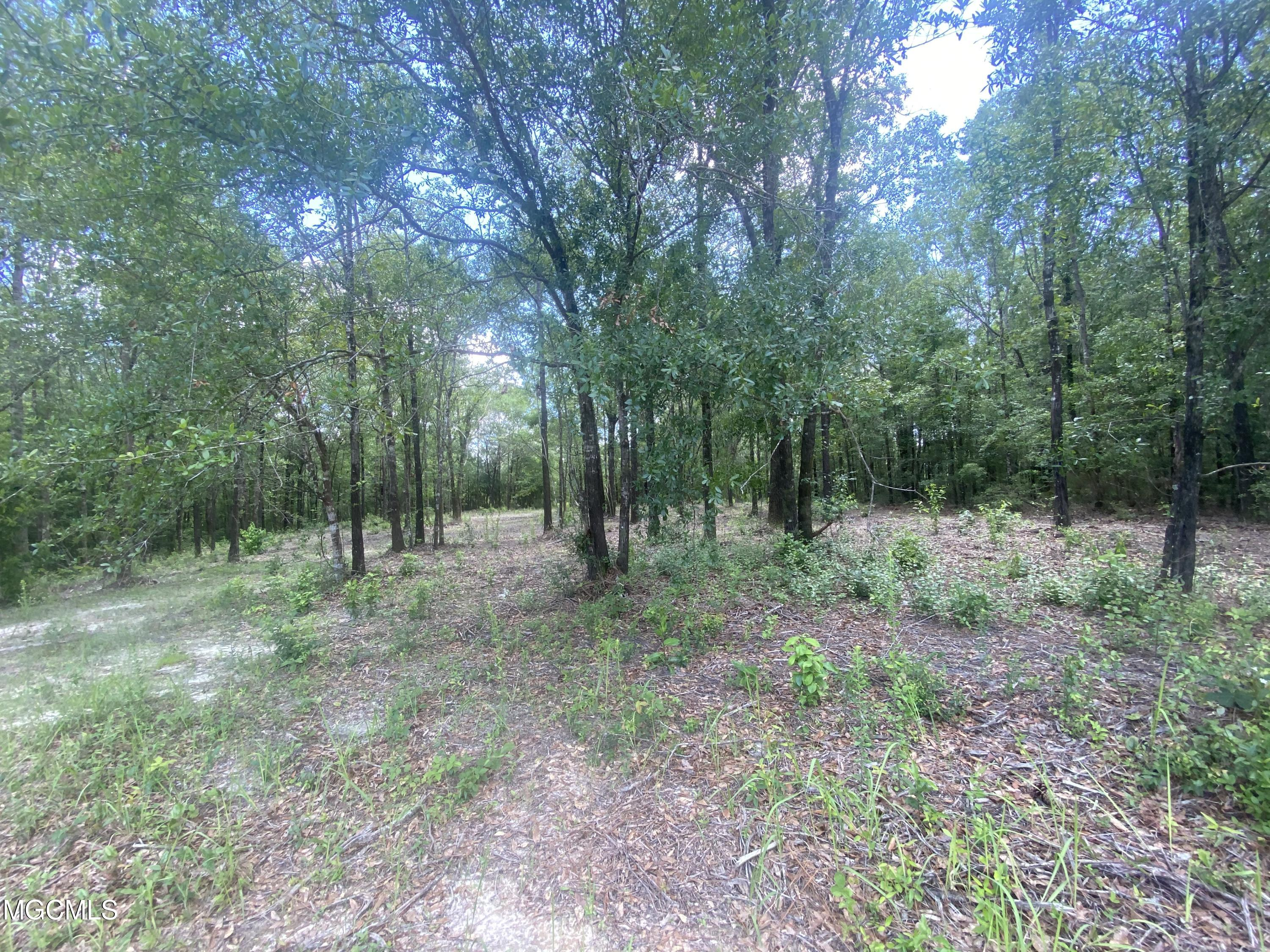 Great place to build your dream home in this well established neighborhood.  Lot is near cul de sac with lots of beautiful trees on the property.