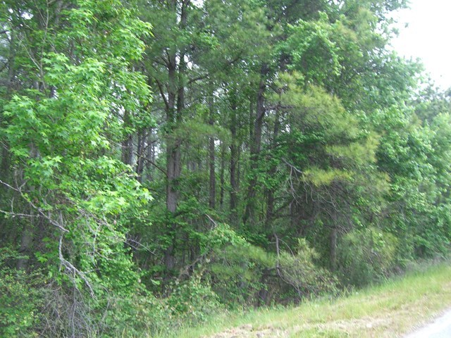 Lot 1 Highway 57 , Macon, GA 31217