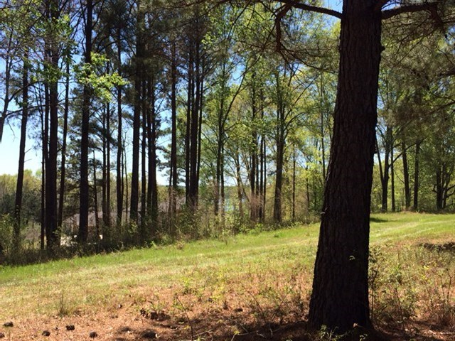 409 Harbor Cove Drive, Macon, GA 31220