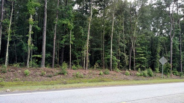 Lot18&19 Highway 49 , Gray, GA 31217