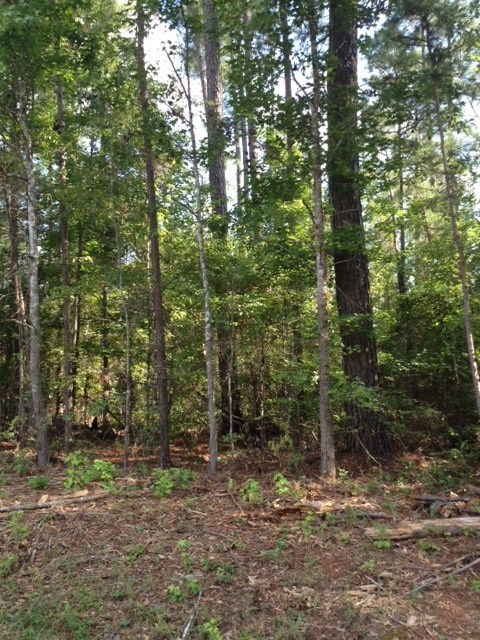 Lot 34 Welker Circle, Macon, GA