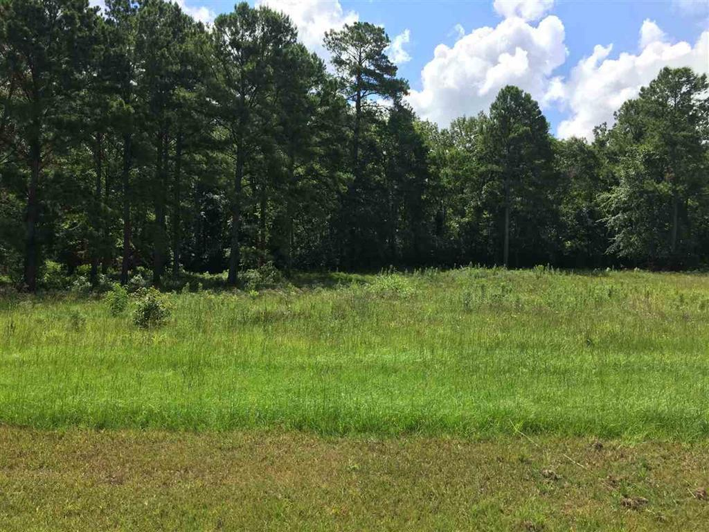 Lot 38 River Ridge , Hawkinsville, GA